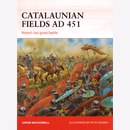 Catalaunian Fields AD 451 - Romes last great Battle (CAM...