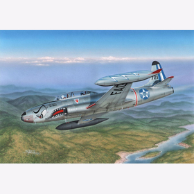 T-33 Japanese and South American T-Birds Special Hobby 32066 1:32